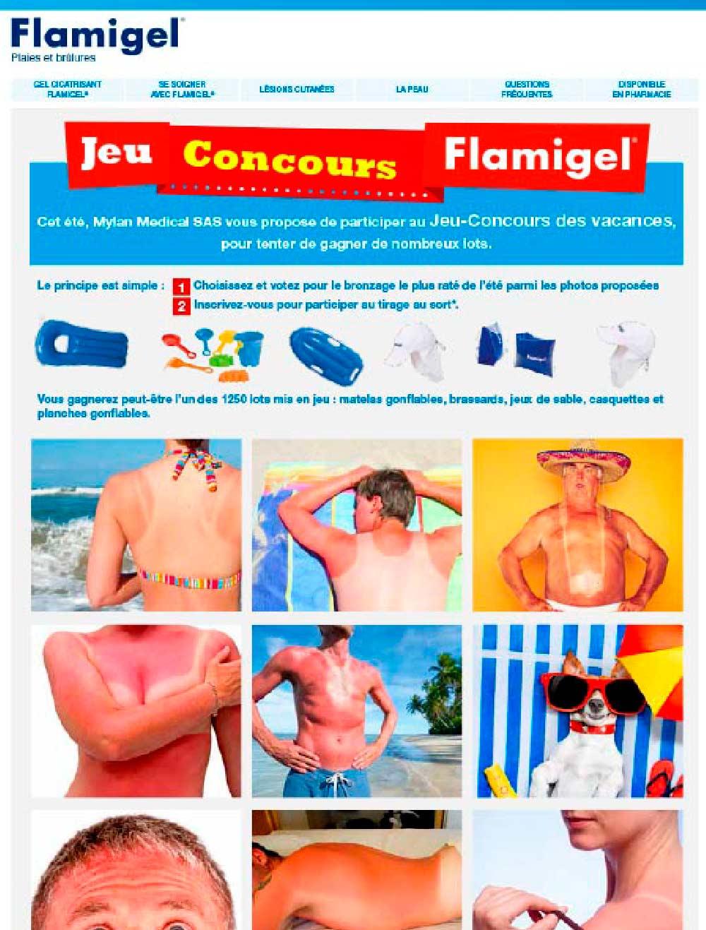 Maquette du jeu concours Flamigel